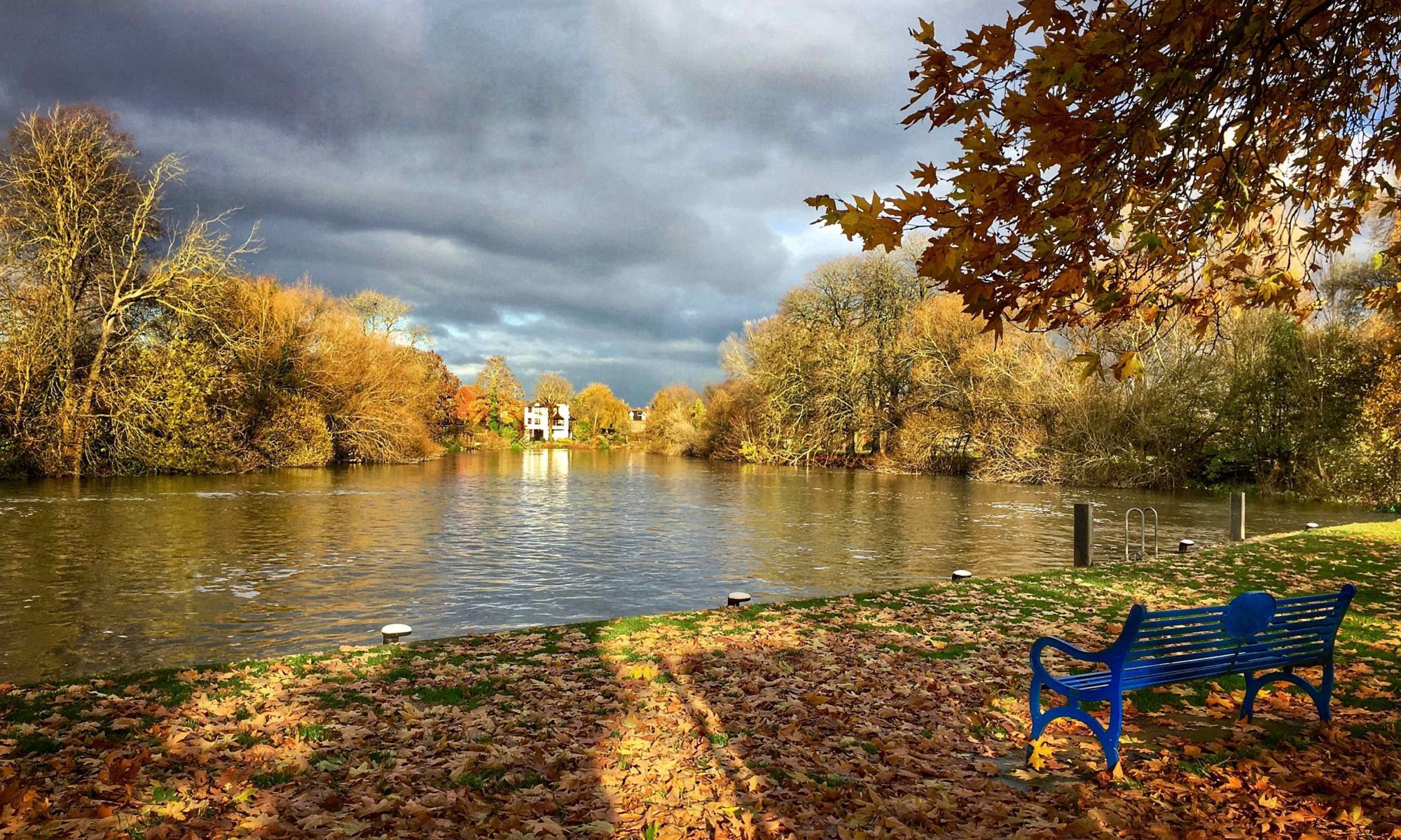 AUTUMNAL SCENE IN READING BERKSHIRE AS FEATURED IN OUR CREATIVE WRITING COURSE IN READING PAGE